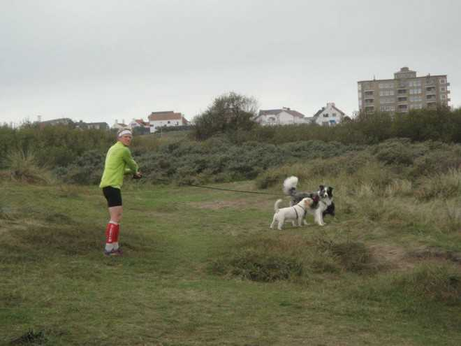 Pieter Heemeryck scott hondjes