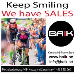 BAIK 2017 Sales Vesterby Roelens