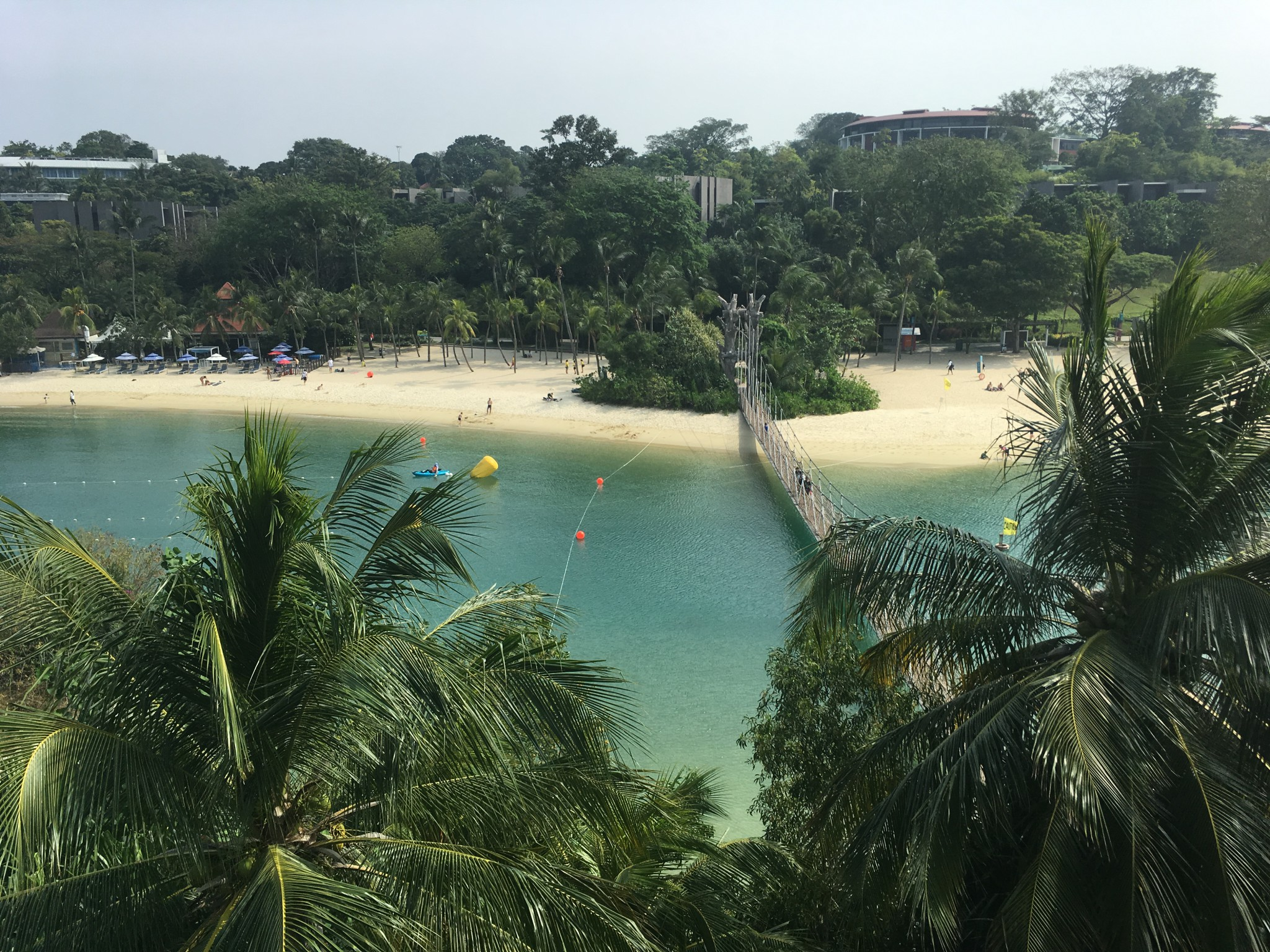 Singapore aquatlon
