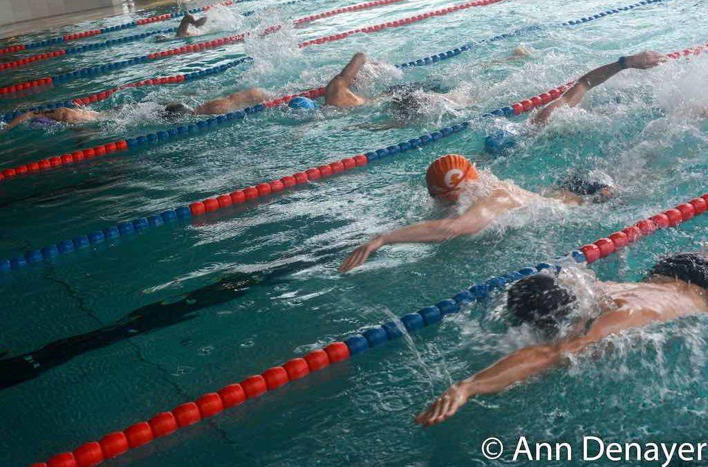 Jelle Clijsters en Lien Peeters winnen zwemloop Maaseik